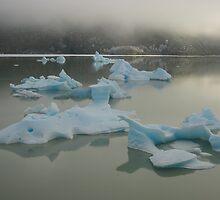 Icebergs by jemskeee