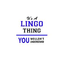It's a LINGO thing, you wouldn't understand !! by thenamer