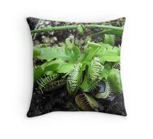 Venus Flytrap 01 Throw Pillow