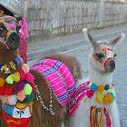 Lamas by jemskeee