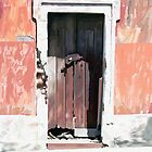 HC 24 Door by Heloisa Castro
