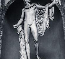 Apollo Belvedere by Andrea Mazzocchetti