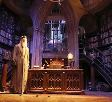 A wise old wizard, Albus Dumbledore by miradorpictures