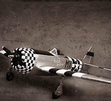 Vintage Plane by Ilze Lucero