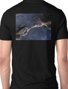 The death kiss of two birds Unisex T-Shirt