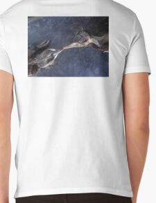 The death kiss of two birds Mens V-Neck T-Shirt