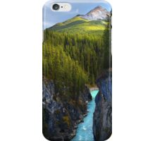 Sunwapta Falls iPhone Case/Skin