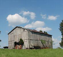 Yesterday's Barn by Sue Ellen Thompson