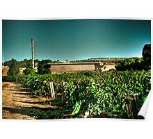 Penfold Winery - V2 Poster