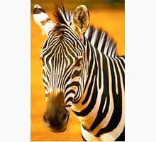 African Zebra Unisex T-Shirt