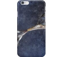 The death kiss of two birds iPhone Case/Skin