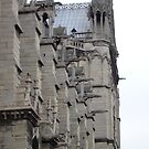 Notre- Dame  by Kylie Blakemore