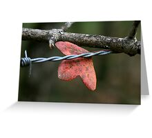 what Nature has become Greeting Card
