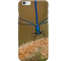 A Dragonfly's Eyes iPhone Case/Skin