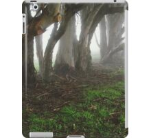 Lake Chabot 2 iPad Case/Skin