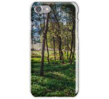 Naftali Trees iPhone Case/Skin