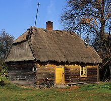 Thatched Cottage by Kasia Nowak