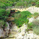 Little Bridge by Tom Gomez