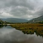 Wilsons Promontory by Steven  Agius
