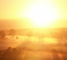 Aussie Sunrise by KerryC