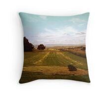 Way Out West II Throw Pillow