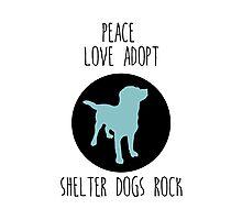 Shelter Dog Love Photographic Print