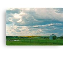 Clouds and Cows Canvas Print