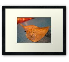 compliment each other like colours Framed Print