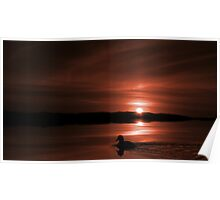 Sunset Duck (Monochrome #1) Poster