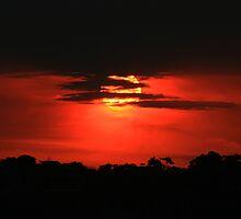 Blood red sunset by Sara Lamond