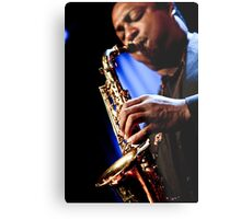 Vincent Herring Metal Print