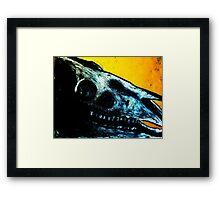 Dartmoor Pony Skull Framed Print