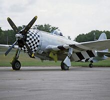 Republic P-47 Thunderbolt by Steve Walter