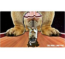 the dude lord pug Photographic Print