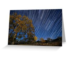 Startrails over Live Oak Greeting Card