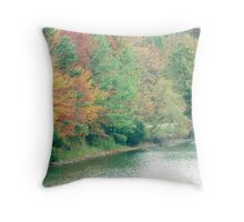 AUTUMN IN VIRGINIA Throw Pillow