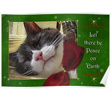 UnTroubled Peace on Earth Poster