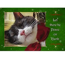 UnTroubled Peace on Earth Photographic Print