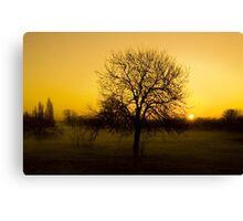 New Dawn Canvas Print