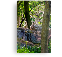 Sigh...One in every crowd Metal Print