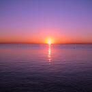 Early morning by Kathryn Potempski