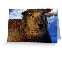 Winter Sheep Greeting Card