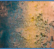 Frozen Algae/Plankton by Pratik Agrawal