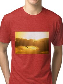 Into the Sun Tri-blend T-Shirt