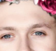 Pretty Niall Sticker