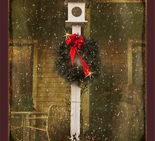 Birdhouse garden greets the season by Owed To Nature