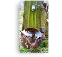 Any one for a cuppa! - Southland - New Zealand Canvas Print