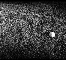 Lacrosse by Jimmy Burns