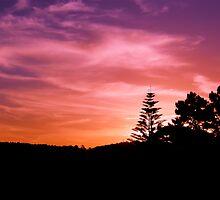 Sunset in Auckland, NZ by theodoorventer