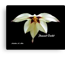 PEACOCK ORCHID Canvas Print